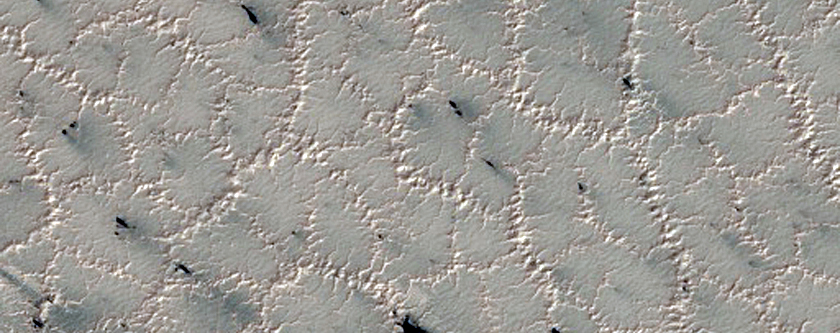 Spider Features in the South Polar Region