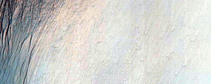 Gullies in Crater in Terra Sirenum