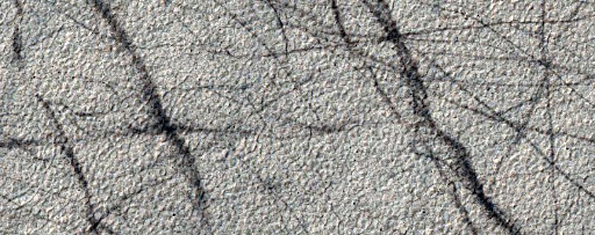 Zigzagueo del remolino de polvo