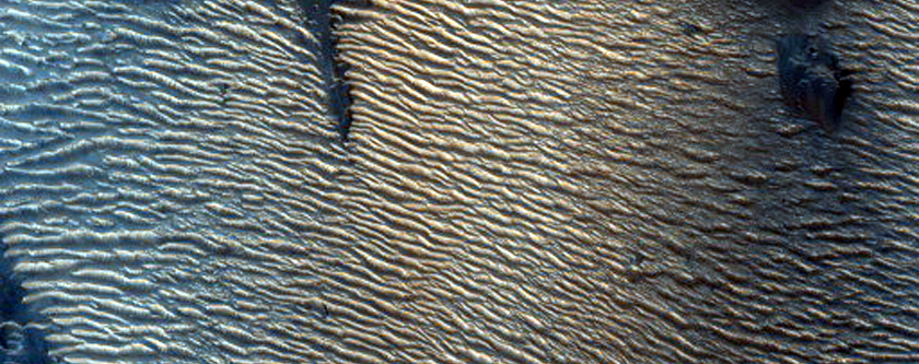 Dark Features in Candor Chasma