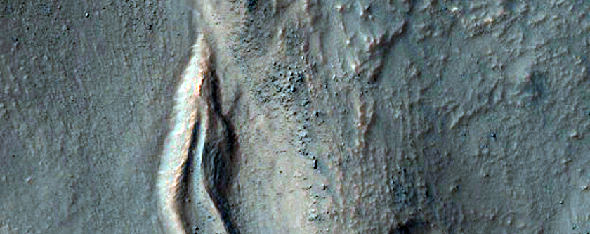 Gullies and Lobate Material in a Crater in the Nereidum Montes