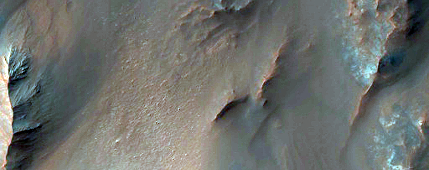 Gullies at the Edge of Hale Crater