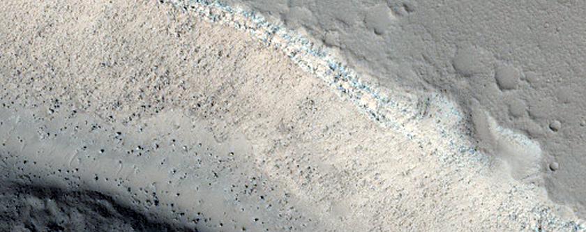 Sample Patapsco Vallis