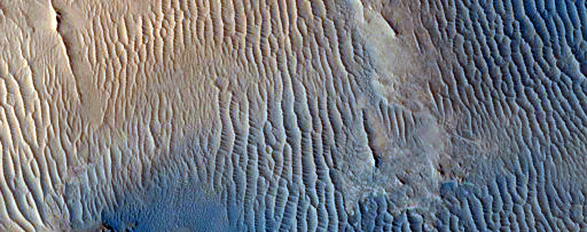 Large Central Uplift of an Impact Crater