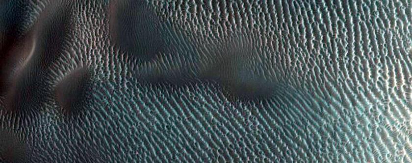 USGS Dune Database Entry Number 0419-449