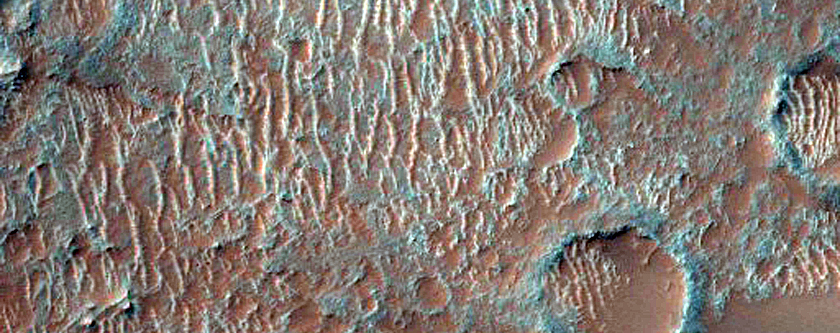 USGS Dune Database Entry Number 3124-080
