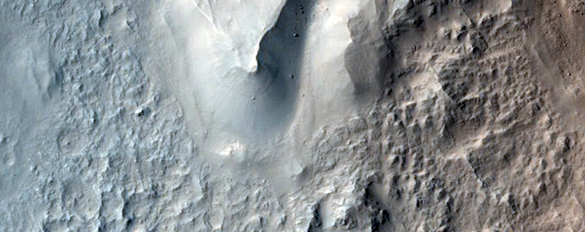 Rim and Interior of Crater in Isidis Planitia