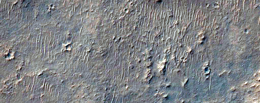 Region Near Miyamoto Crater