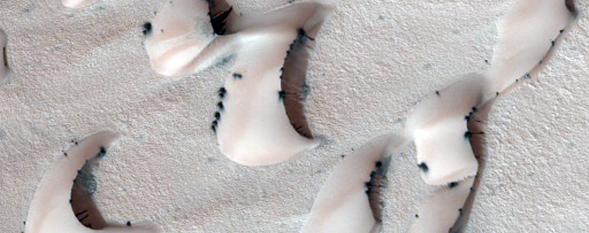 Frosted Chasma Boreale Dunes
