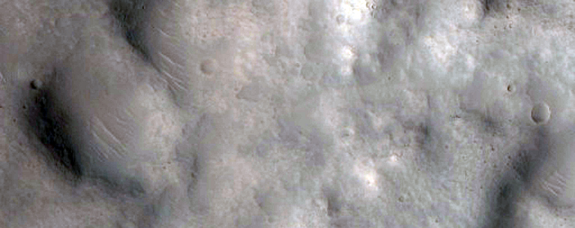 Geezer Gullies at Tempe Terra