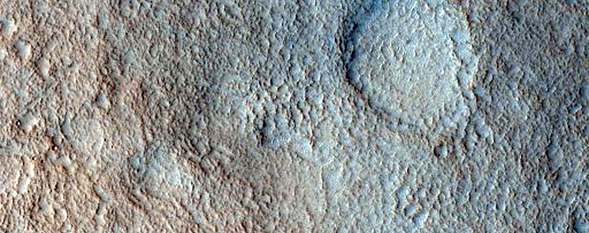 Nilosyrtis Mensae Fretted Terrain and Northern Plains Transition Area