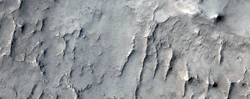 Large Irregular Pits on a Crater Floor