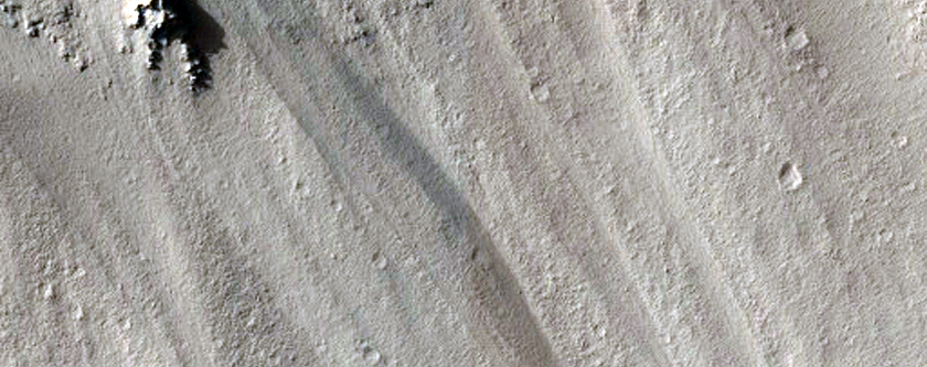 Gullies with Bright Deposits in Poynting Crater