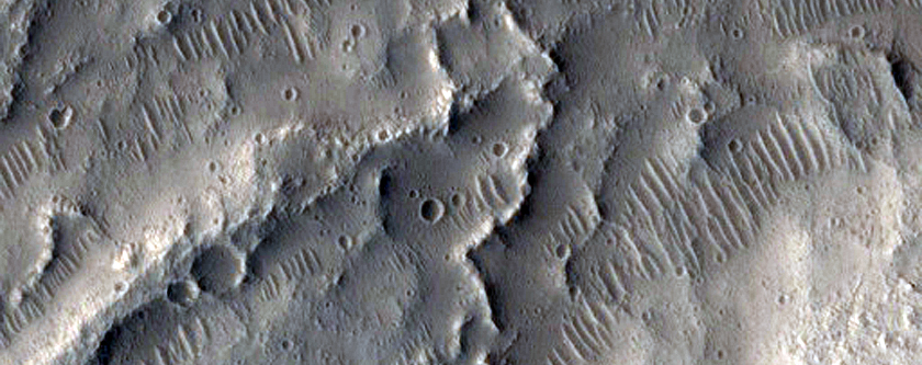 Young Esker-Like Ridges in Tempe Terra