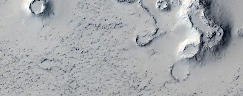 Possible Cone Field in Phlegra Dorsa