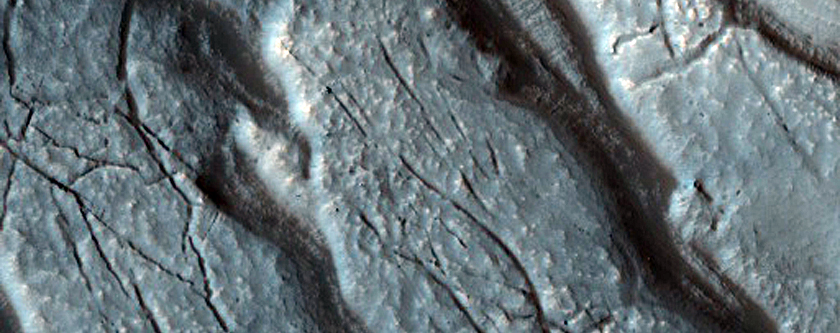 Large-Scale Slumping in Moreux Crater