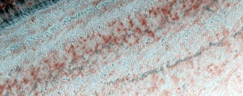 Sustained Bright Patches at Margin of Polar Layered Deposits