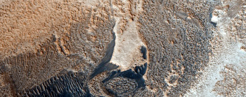 Interaction between Abalos Mensa and Rupes Tenuis Dunes
