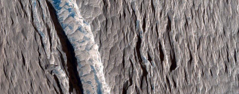 Ridges and Dark Material West of Olympus Mons