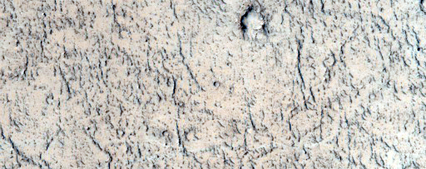 Volcanic Rootless Constructs in the Western Tartarus Colles
