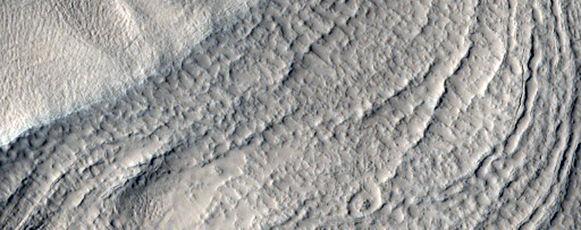 Well Developed Hollows and Ridges in Nilosyrtis Region Crater