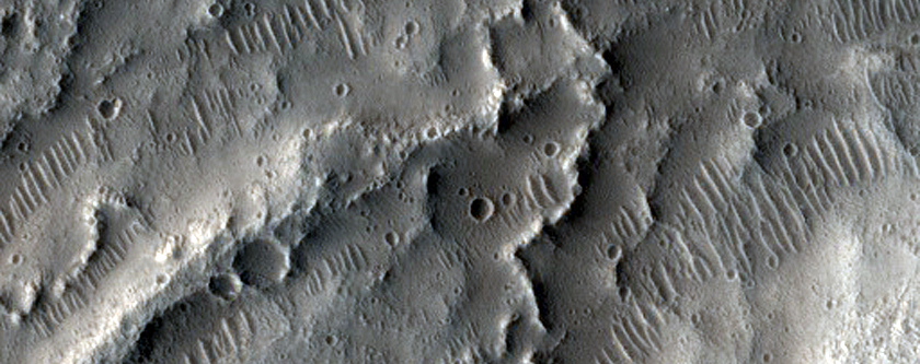 Young Esker-Like Ridges in Tempe Terra