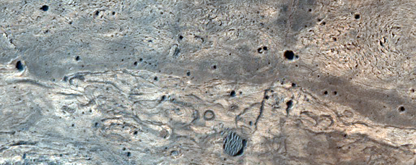 Concentric Structures in Meridiani Planum