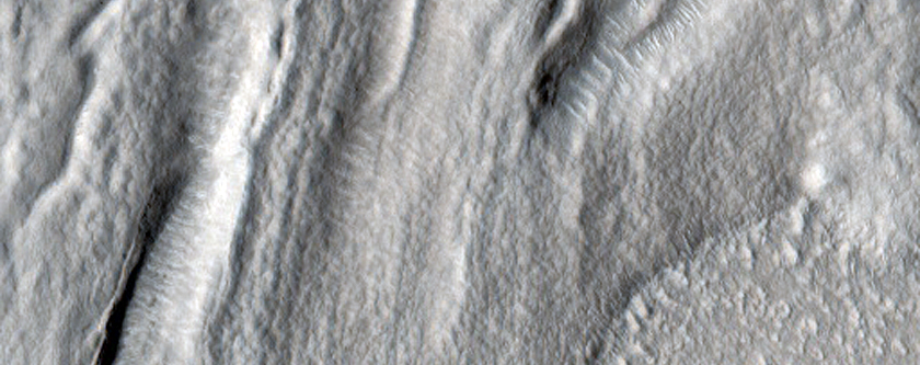 Nilosyrtis Mensae Fretted Terrain Northern Plains Transition Area