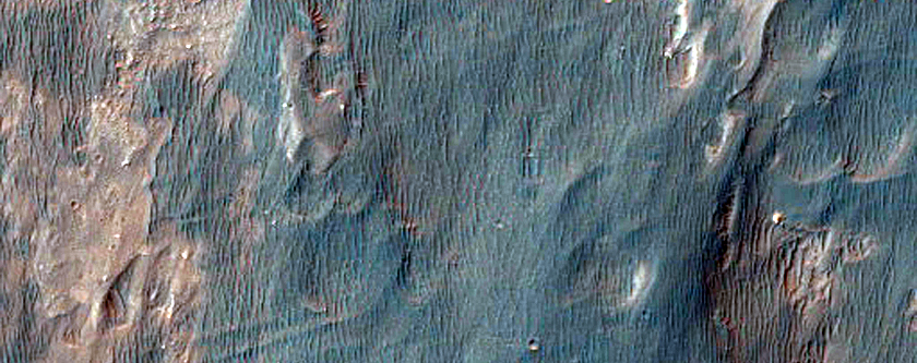 Candidate MSL Landing Site in Holden Crater