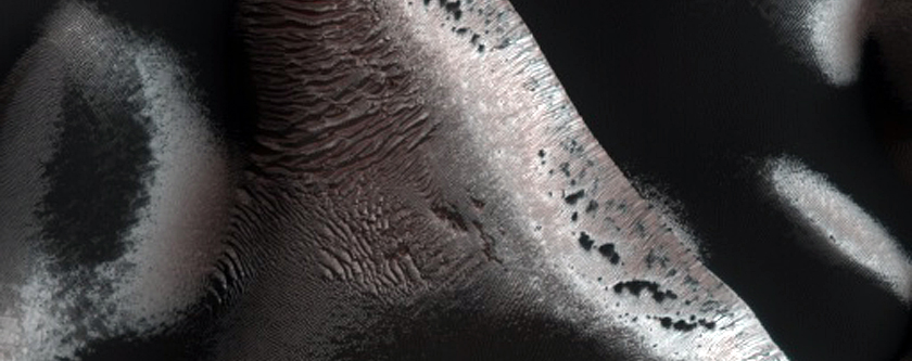 USGS Dune Database Entry Number 0284-520