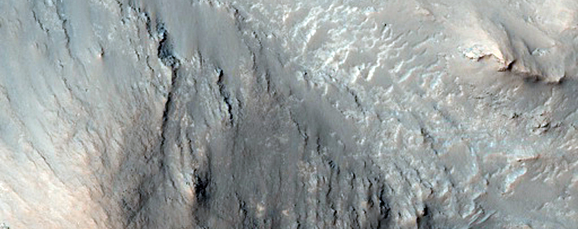 Central Uplift of a Large Impact Crater
