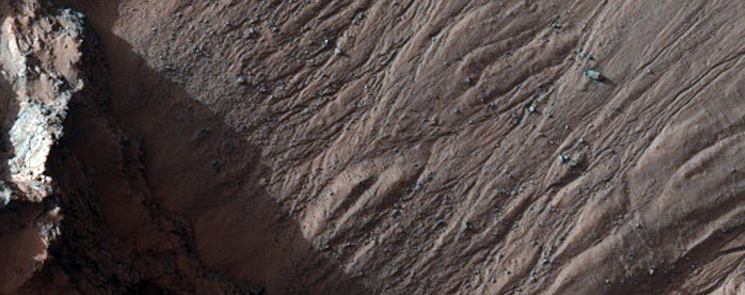 Volatiles and Gullies in Asimov Crater