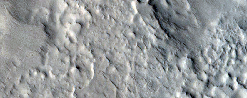 Ridges in Nilosyrtis Region