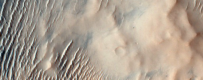 Possible Remnant of Pitted Materials in Bakhuysen Crater