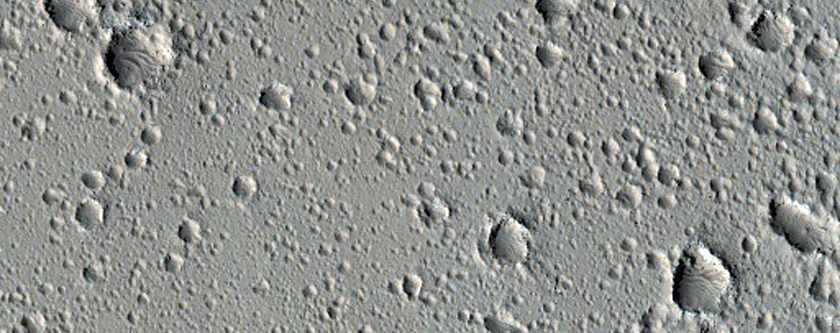 New Primary Craters in a Sea of Secondary Craters