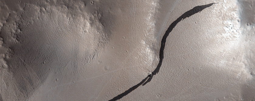 Troughs and Wind Features of the Tharsis Region