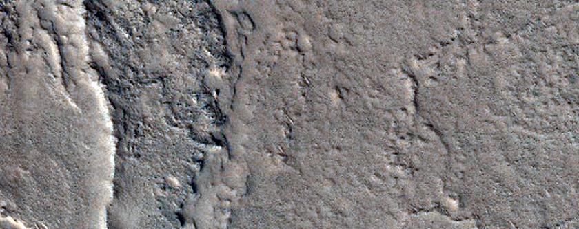 Ridges in Coloe Fossae Region