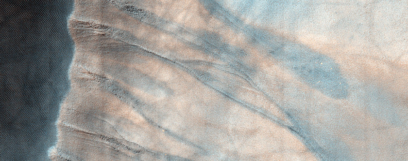 Active Gullies in Crater Dune Field, Southern Polar Region