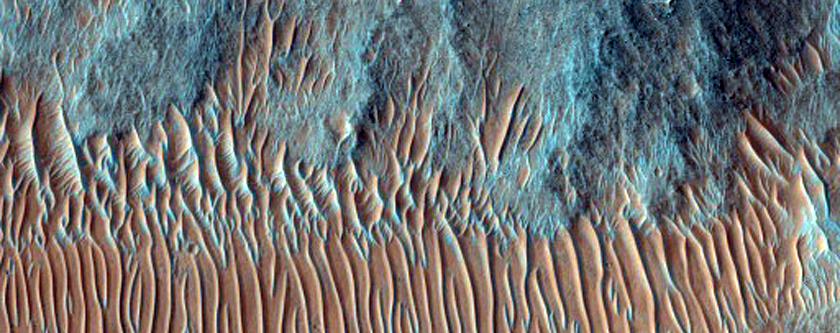 Possible Phyllosilicates in Nirgal Vallis
