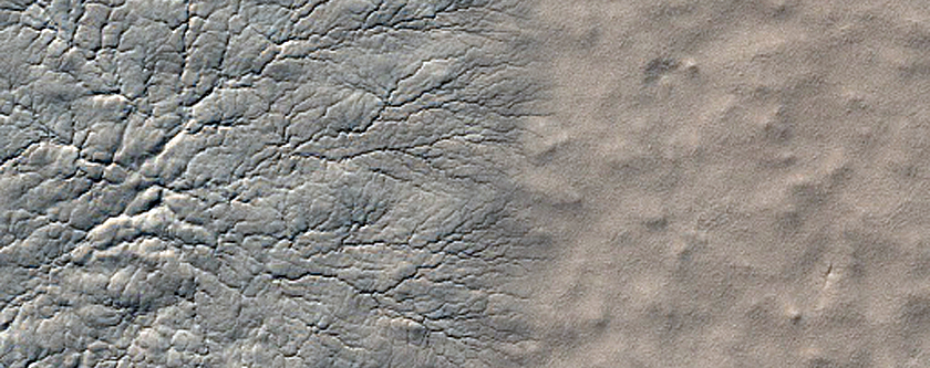 Starburst Spiders at a South Polar Cracked and Gullied Site
