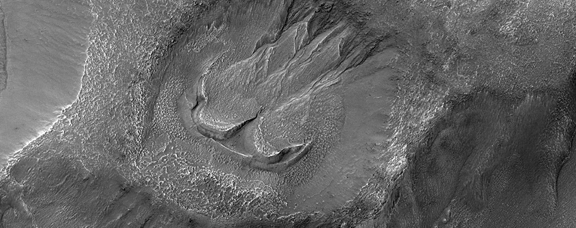 Gullies and Lobate Material in a Crater in Nereidum Montes
