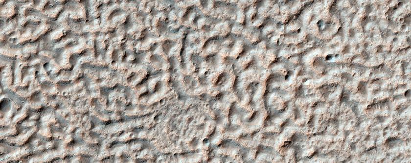 Brain-Coral Texture on Crater Floor