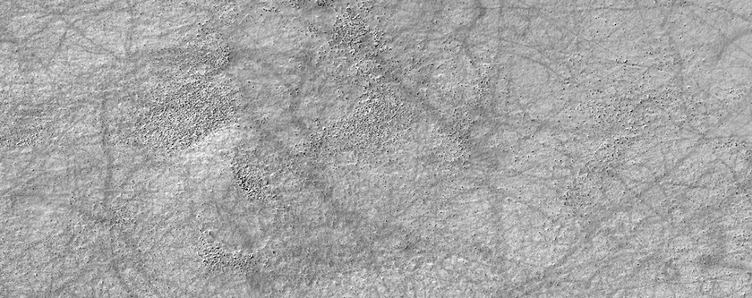 A Network of Dust Devil Tracks