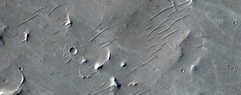 Sampling Plains and Possible Wrinkle Ridges in Southern Schiaparelli Crater