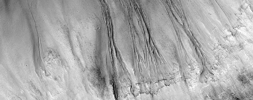 Gullies on the South Wall of Dao Vallis near the Confluence with Niger Vallis