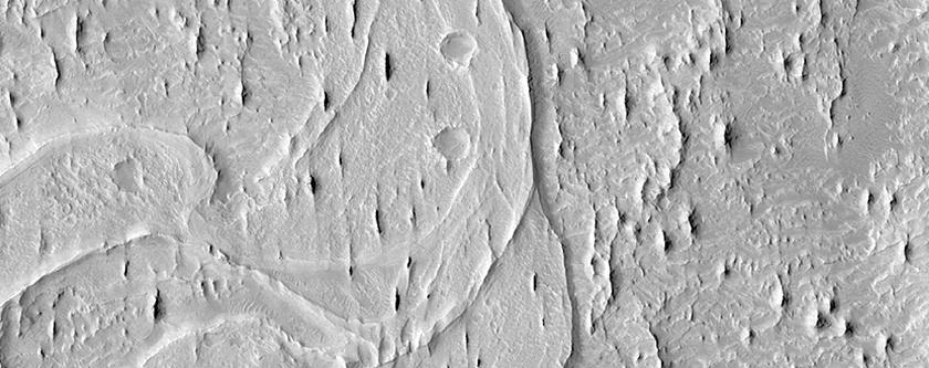 Meanders and Tributaries in Ridge Form in the Zephyria Region