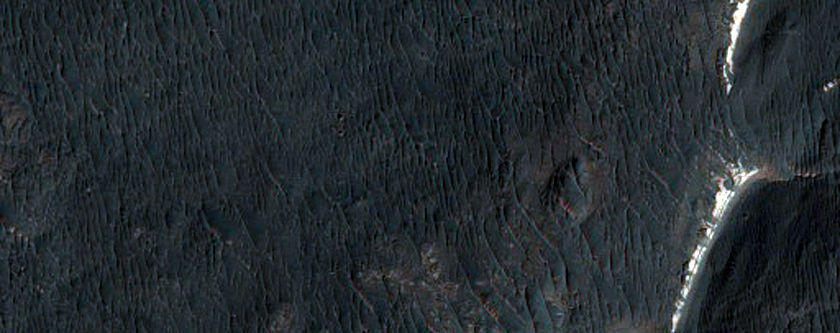 Best Fan Surfaces in West Holden Crater