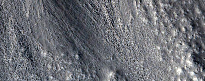 Northern Hemisphere Gullies with Layers