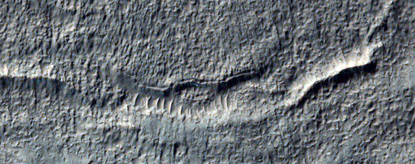 Gullies Incised on Crater Wall