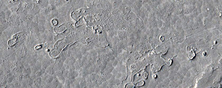 Field of Morphologically-Diverse Ring/Cone Structures in Athabasca Valles